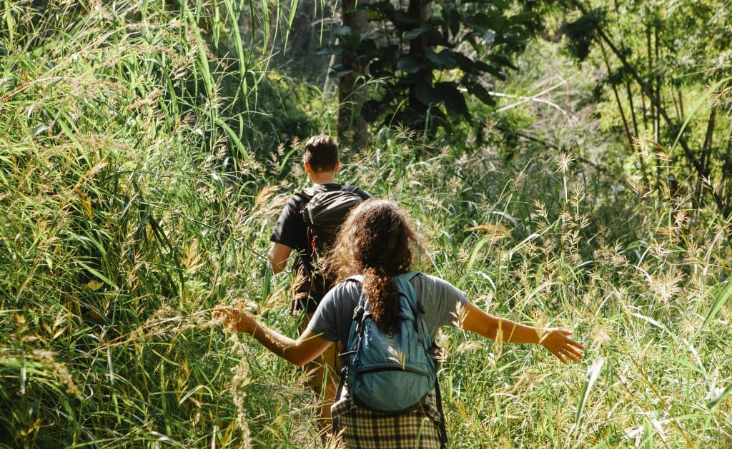 Faceless hikers exploring woods with lush grass in sunlight